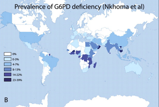 Worldwide prevalence of G6PD deficiency